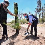 Crea Salum muro verde para proteger Parque Sahuatoba